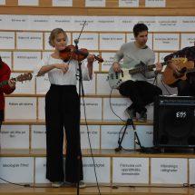 Ållebergsgymnasiet firar svenska demokratin